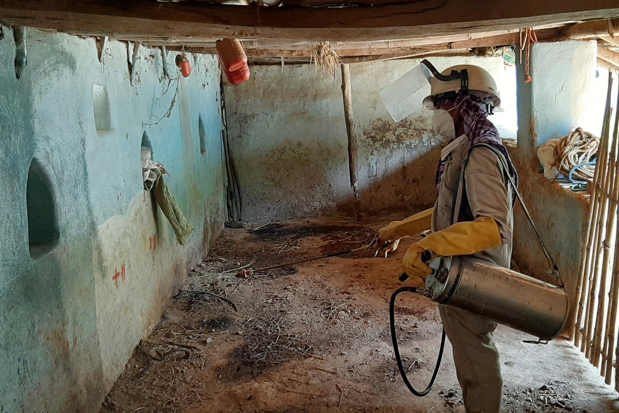 Indoor residual spraying for vector control in a high kala-azar endemic village.