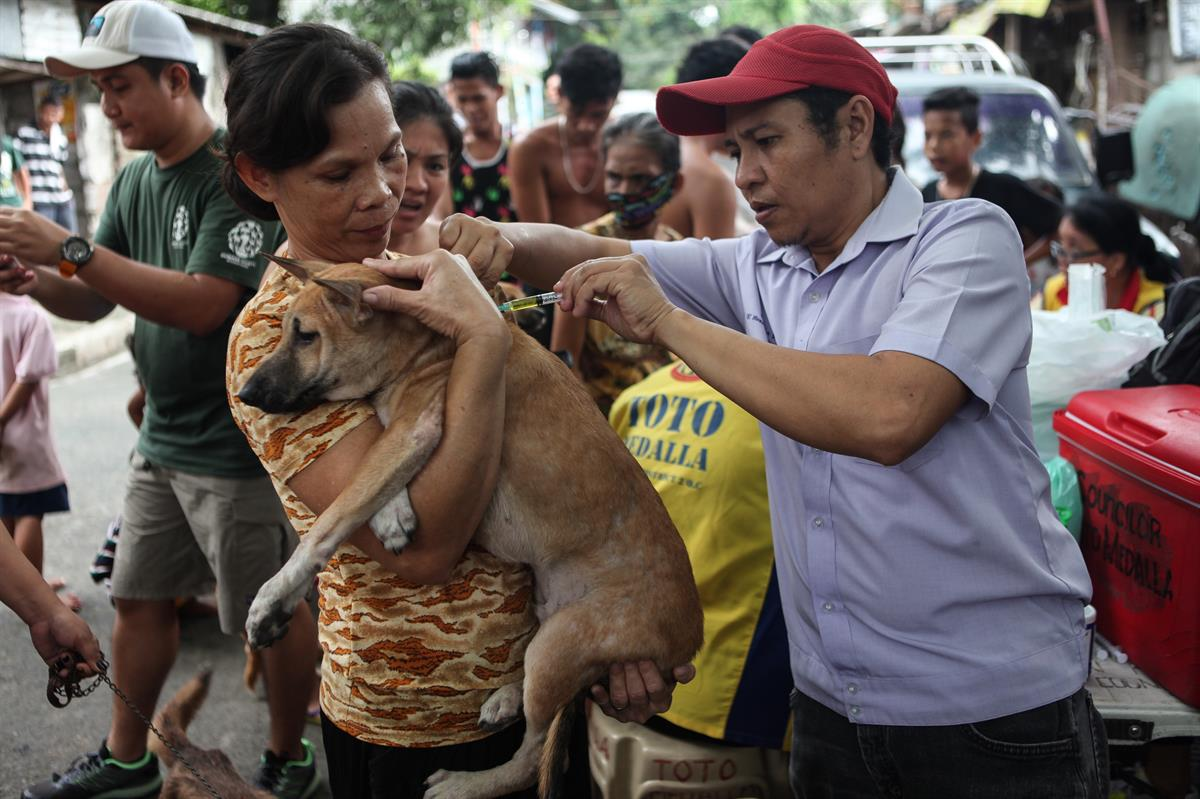 'United Against Rabies' collaboration celebrates one year ...