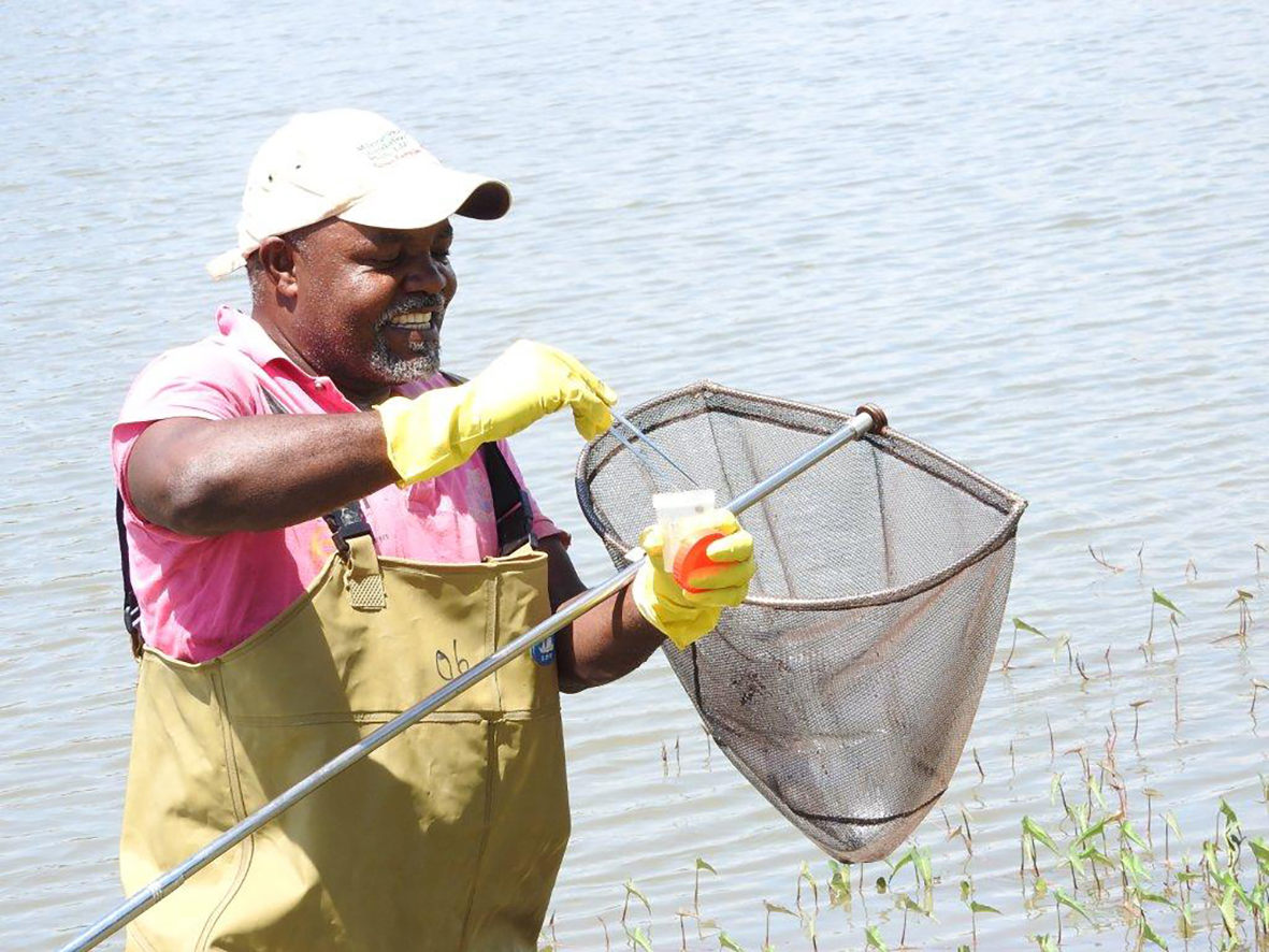 Schistosomiasis elimination: refocusing on snail control to sustain progress