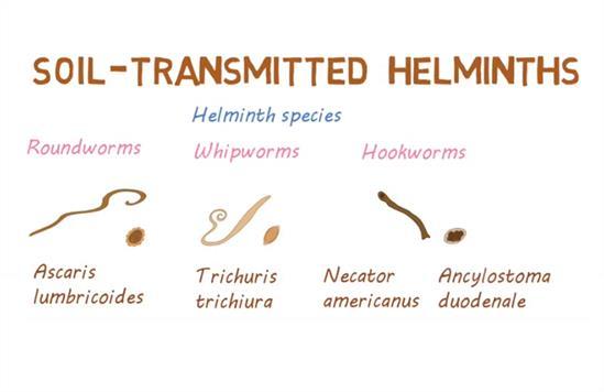 helminthic def)