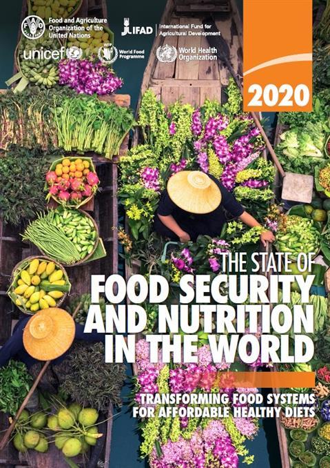world health organization diets