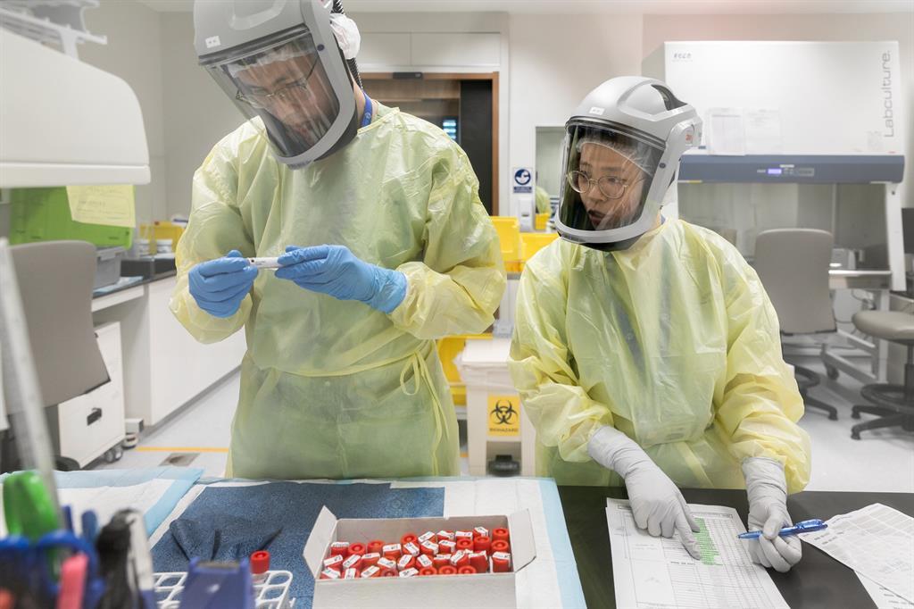 Medical technologists process SARS-CoV-2 samples
