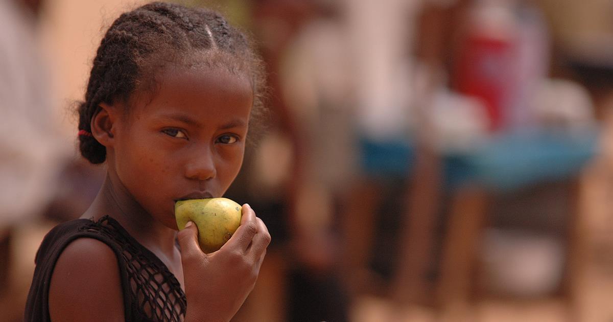 La OMS insta a los gobiernos a fomentar la alimentación saludable en los establecimientos  públicos