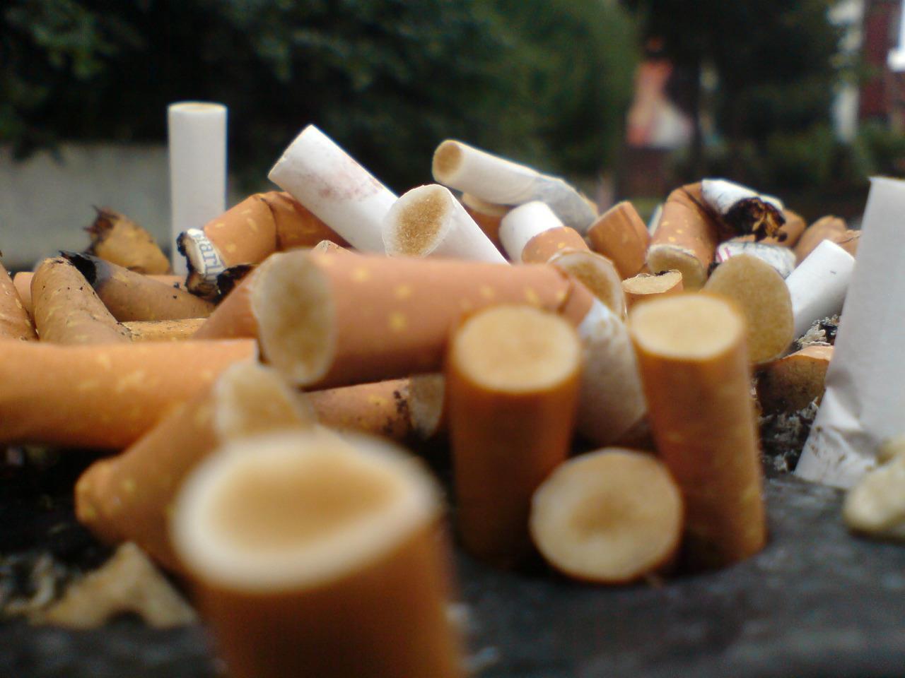 tobacco control cigarette tips